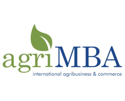 Dissertation in MBA finance